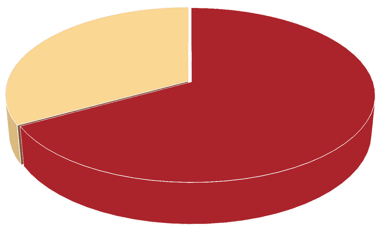 Pie Chart showing 67%